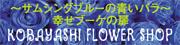 諏訪、花の小林